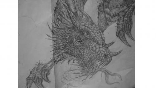 elan-mello-micropigmentacao-capilar-portugal-desenho
